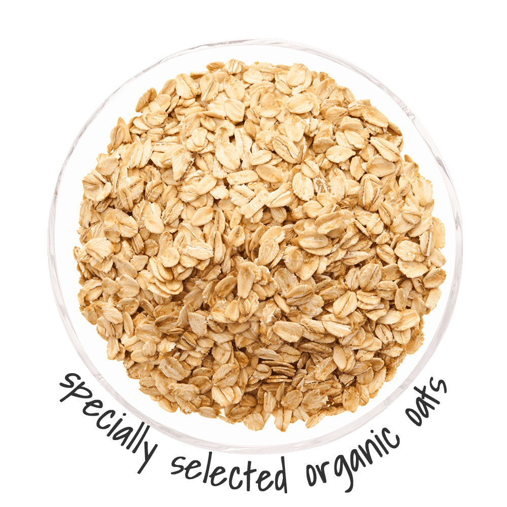 specially selected organic oats for dogs are excellent health boosters