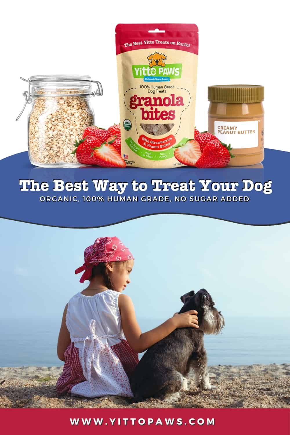 Yitto Paws are the Best Way to Treat Your Dog!