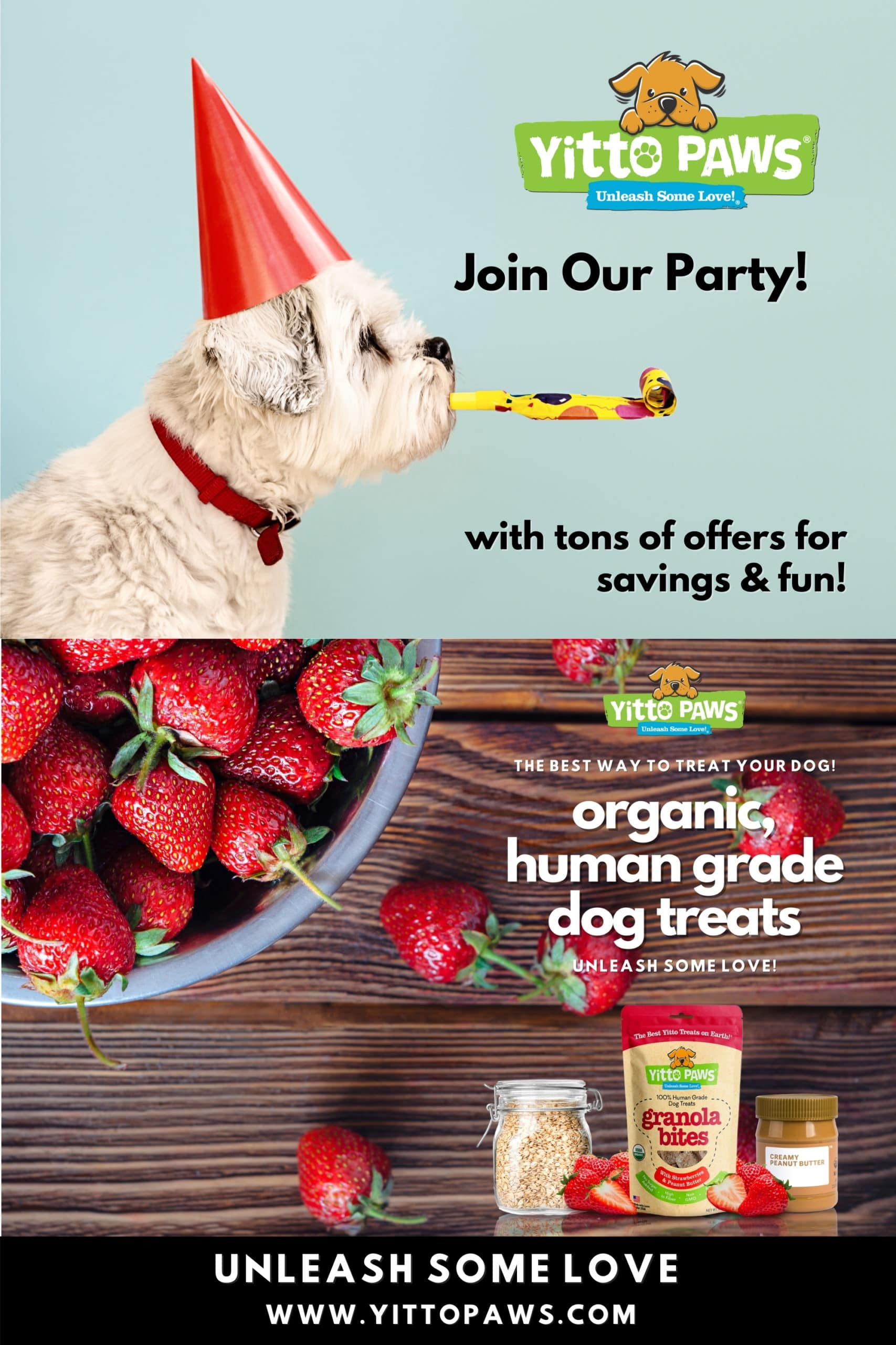 Join our party that's filled with tons of offers for savings & fun!